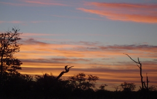 Beautiful Sky at Ntsiri Private Game Reserve