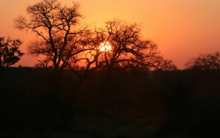 Ntsiri Private Game Reserve - sunset view